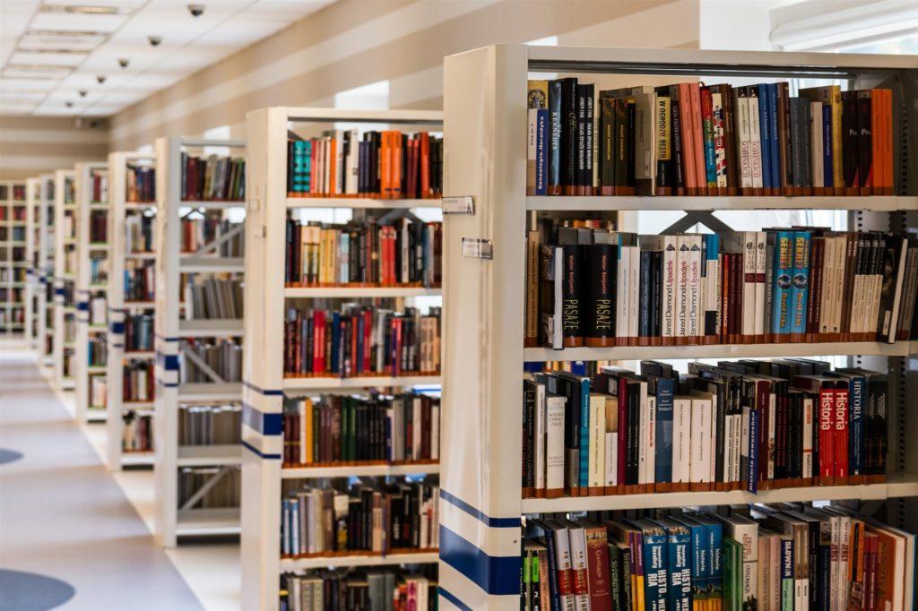 row of books in shelf